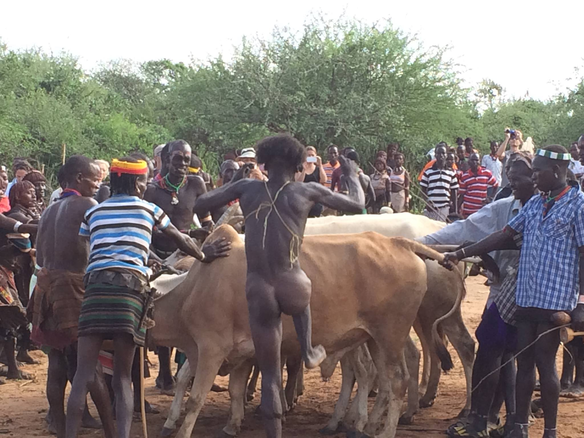 A significant event in the Hamer society is the Bull Jumping Ceremony. The rite marks a passage of men from youth to manhood.