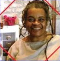 Dindga McCannon - African-American Artist, Quilter, Author and Illustrator