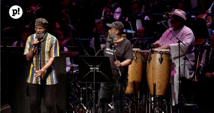 The Last Poets at 2019 Rotterdam Poetry Festival