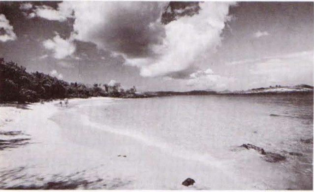 Virgin Island Beach