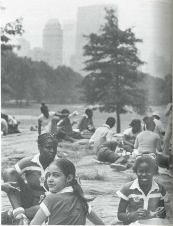 Kids enjoying lunch in the park